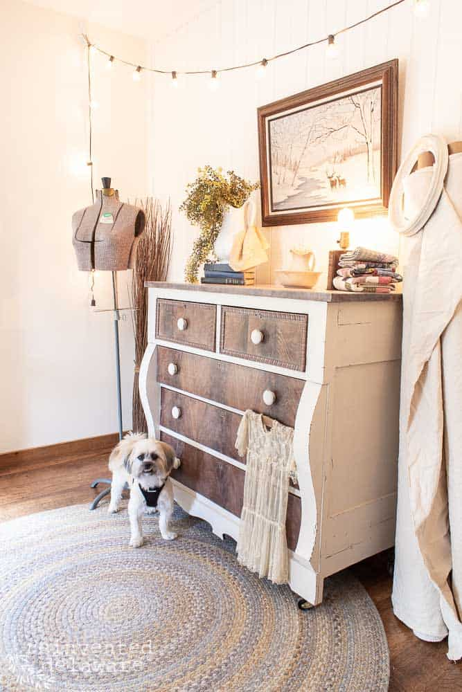dresser makeover with cute dog in front of the dresser