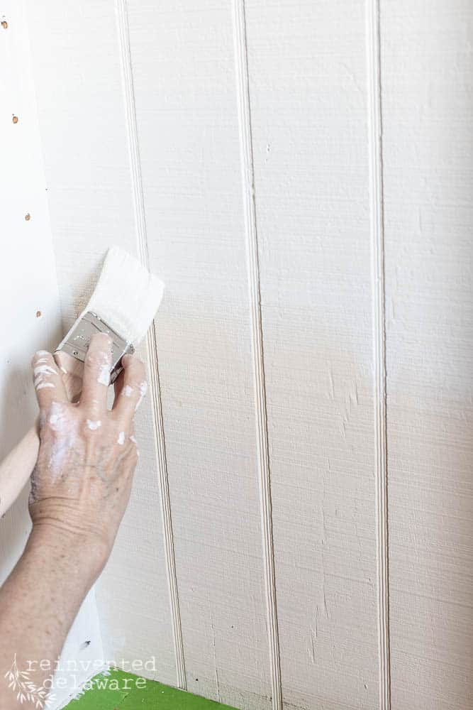 close up shot of lady painting pantry wall with Zibra paintbrush