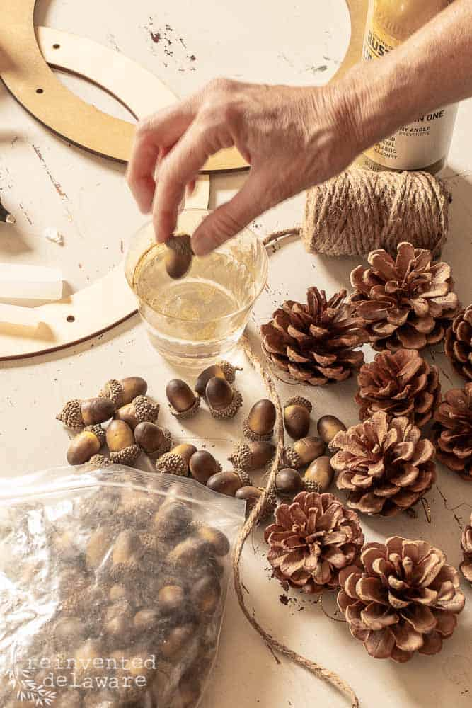 lady dipping an acorn into the cup of water that has gold spray paint sprayed into it. Also supplies for the pine cone wreath laying on th work table